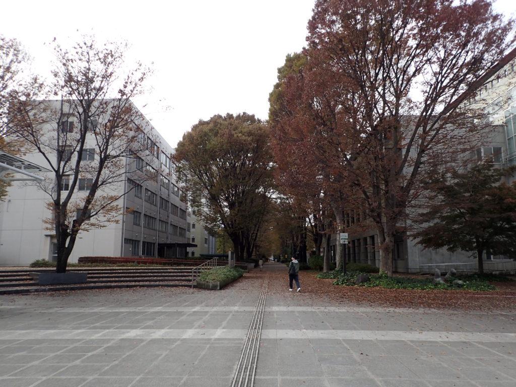 東京 農工 大学 オープン キャンパス 2019
