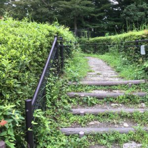Vol.1159 東小金井~武蔵野公園[1時間半の散歩]
