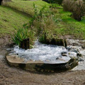 Vol.1300 自然観察園 ほたる池から溢れ出る湧水