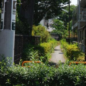 Vol.524 小金井の水路跡 No.24 境村分水