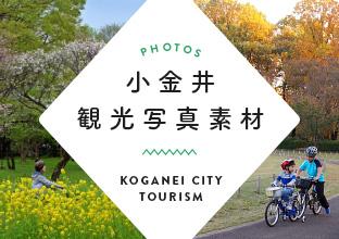 小金井観光写真素材集